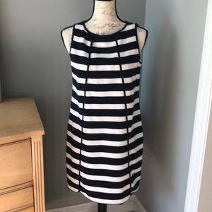 Beautiful Loft Navy and white sleeveless dress!